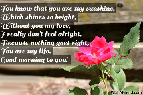 Good Morning Quotes For Girlfriend Unique 8307Goodmorningmessagesforgirlfriend 500×333  Angelica